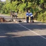 Hombre a bordo de una motocicleta muere al impactar con una vaca en Puerto Cortés